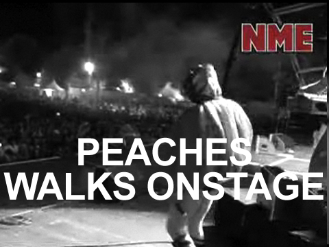 Peaches Walks Onstage at Benicassim 2009