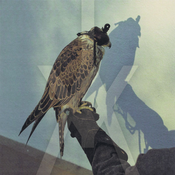 21. Iceage - 'You're Nothing'