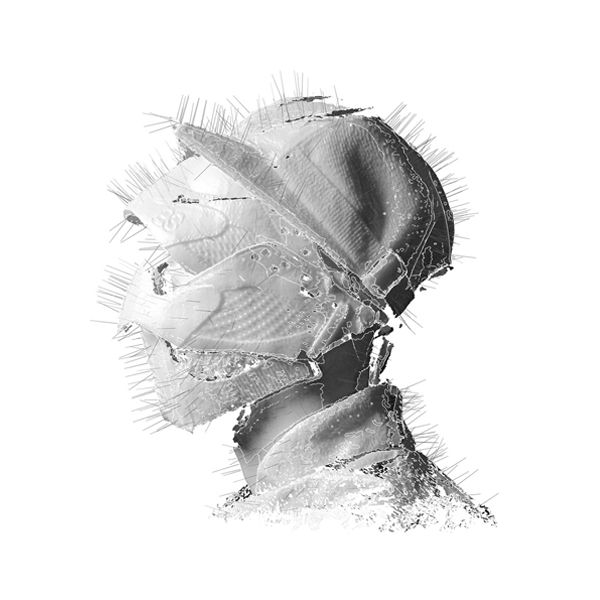 The Golden Age, 'WOODKID'