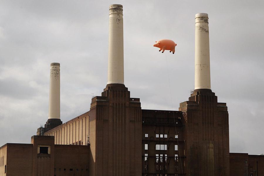Pink Floyd - 'Animals'