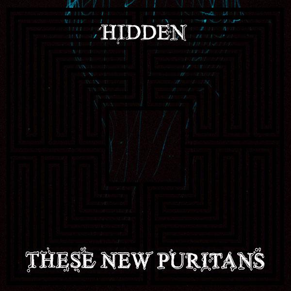 14. These New Puritans - 'Hidden' (2010)