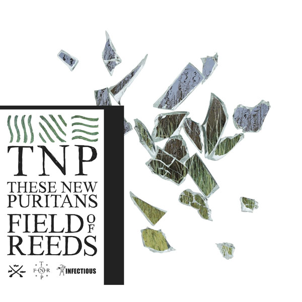28. These New Puritans - 'Field Of Reeds'