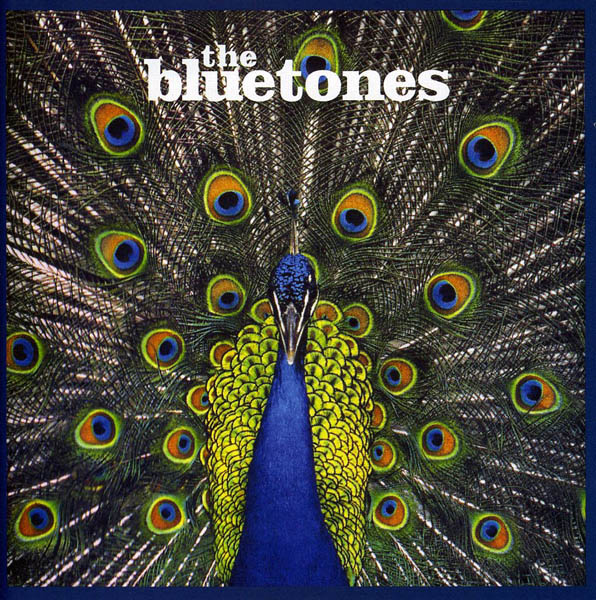 The Bluetones, 'Expecting To Fly'