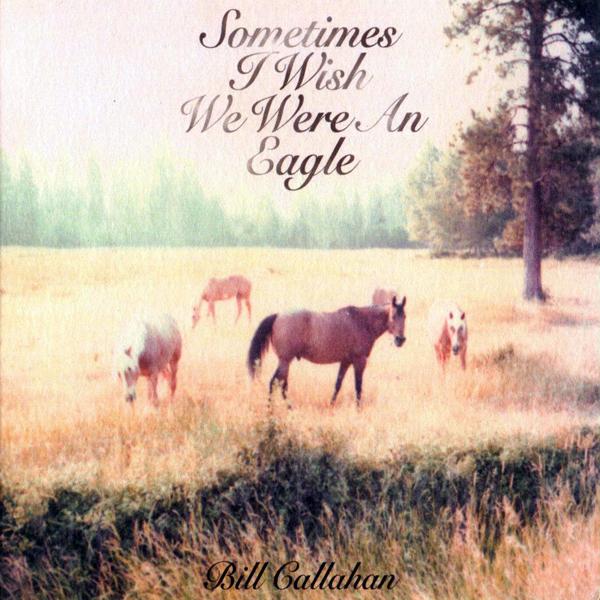 Bill Callahan, 'Sometimes I Wish We Were An Eagle'