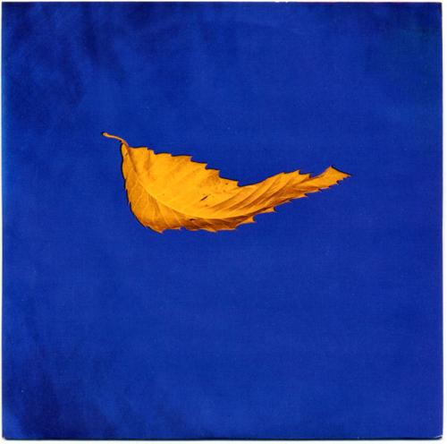 New Order - 'True Faith'