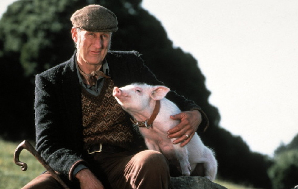 Babe James Cromwell