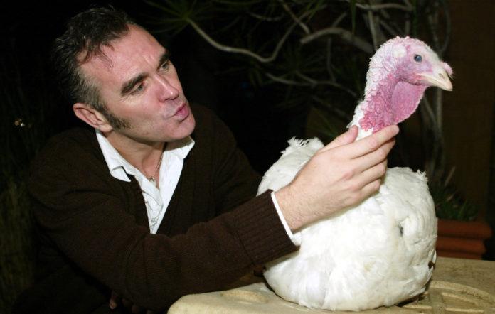 Morrissey Turkey