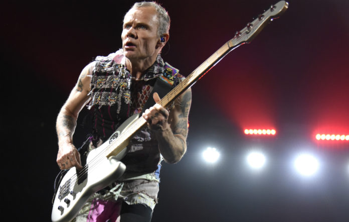 Red Hot Chili Peppers' bassist Flea, live
