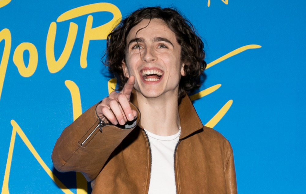 timothee chalamet red carpet pointing