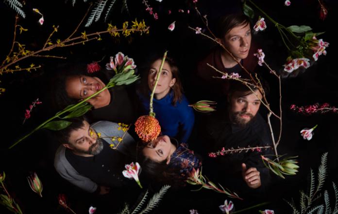 Dirty Projectors new album