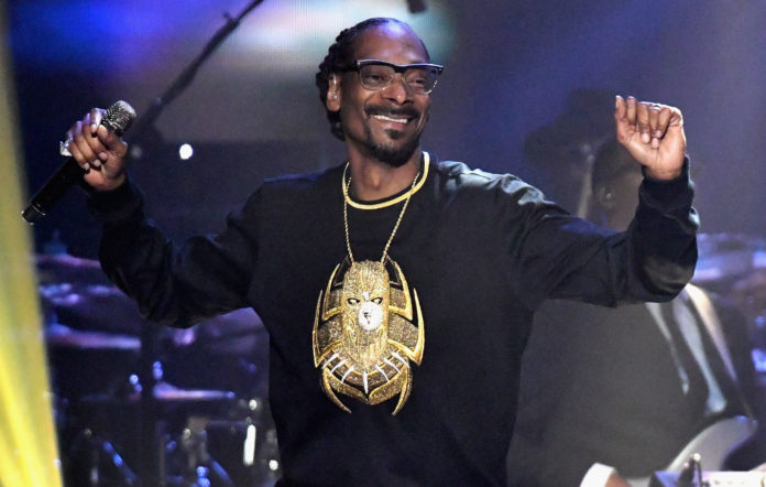 Snoop Dogg stage show