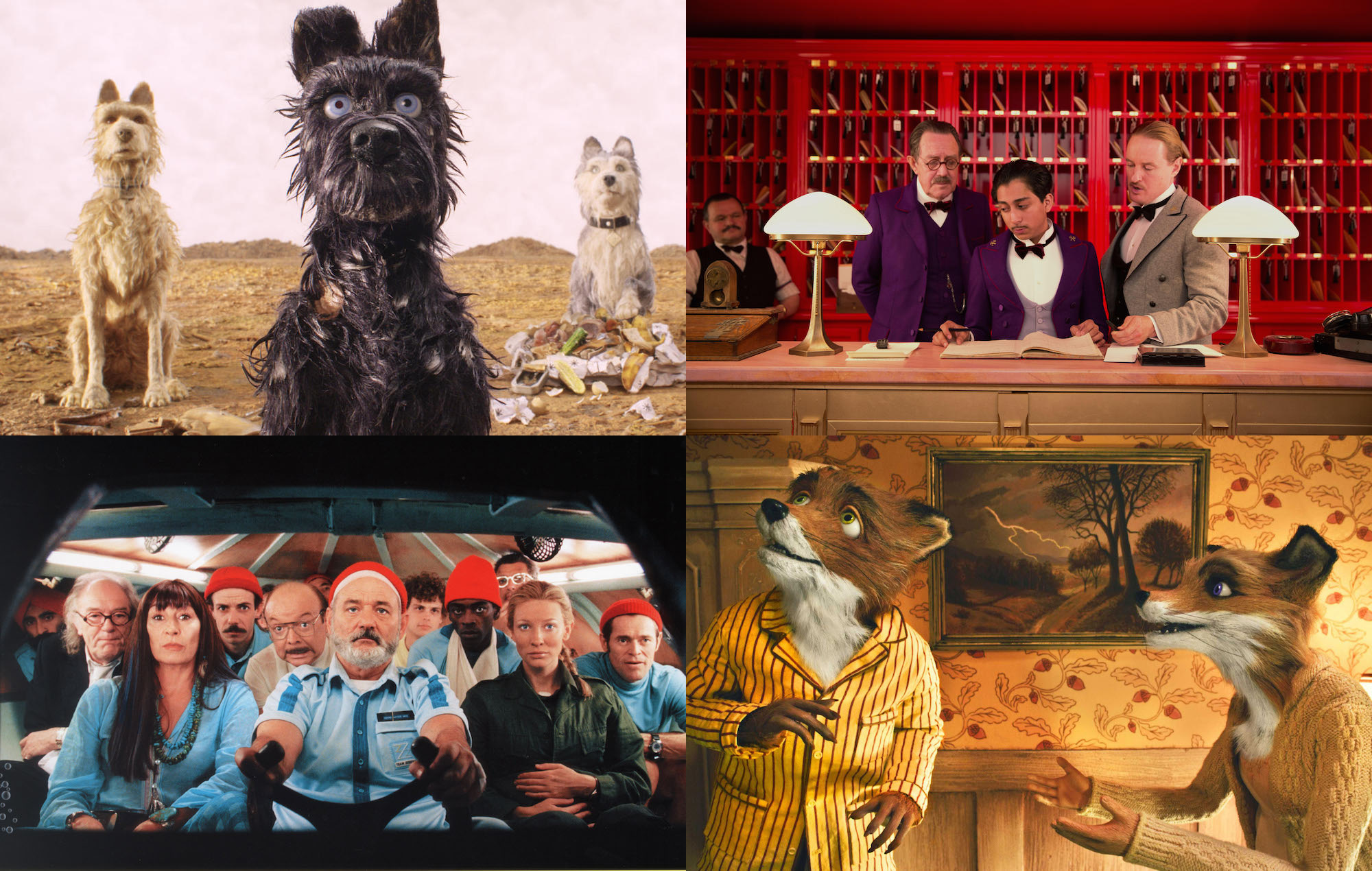 Every Wes Anderson Movie Ranked In Order Of Greatness