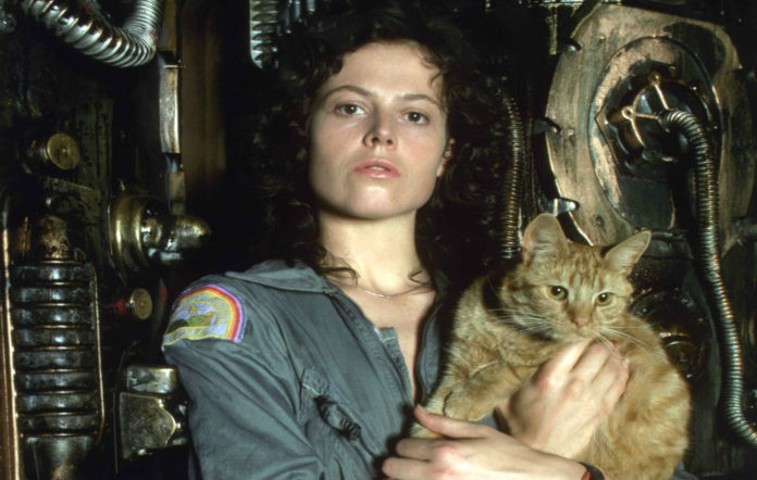 The cat from Alien is getting it's own spin off