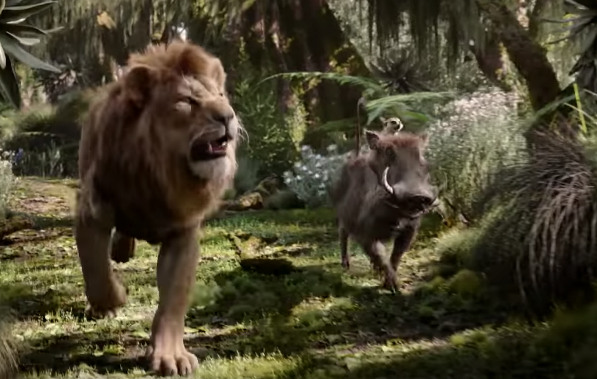 Screengrab from 'Hakuna Matata' clip in 'The Lion King'