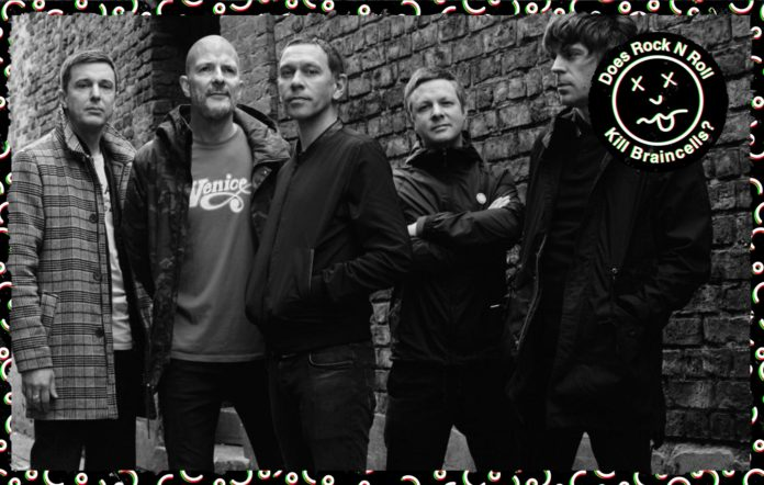 Does Rock 'N' Roll Kill Braincells - Rick Witter, Shed Seven NME interview