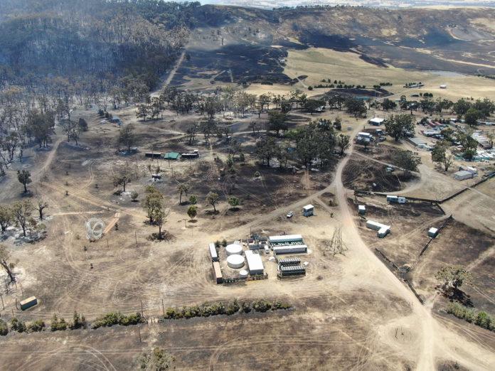 Rainbow Serpent Festival bushfire damage