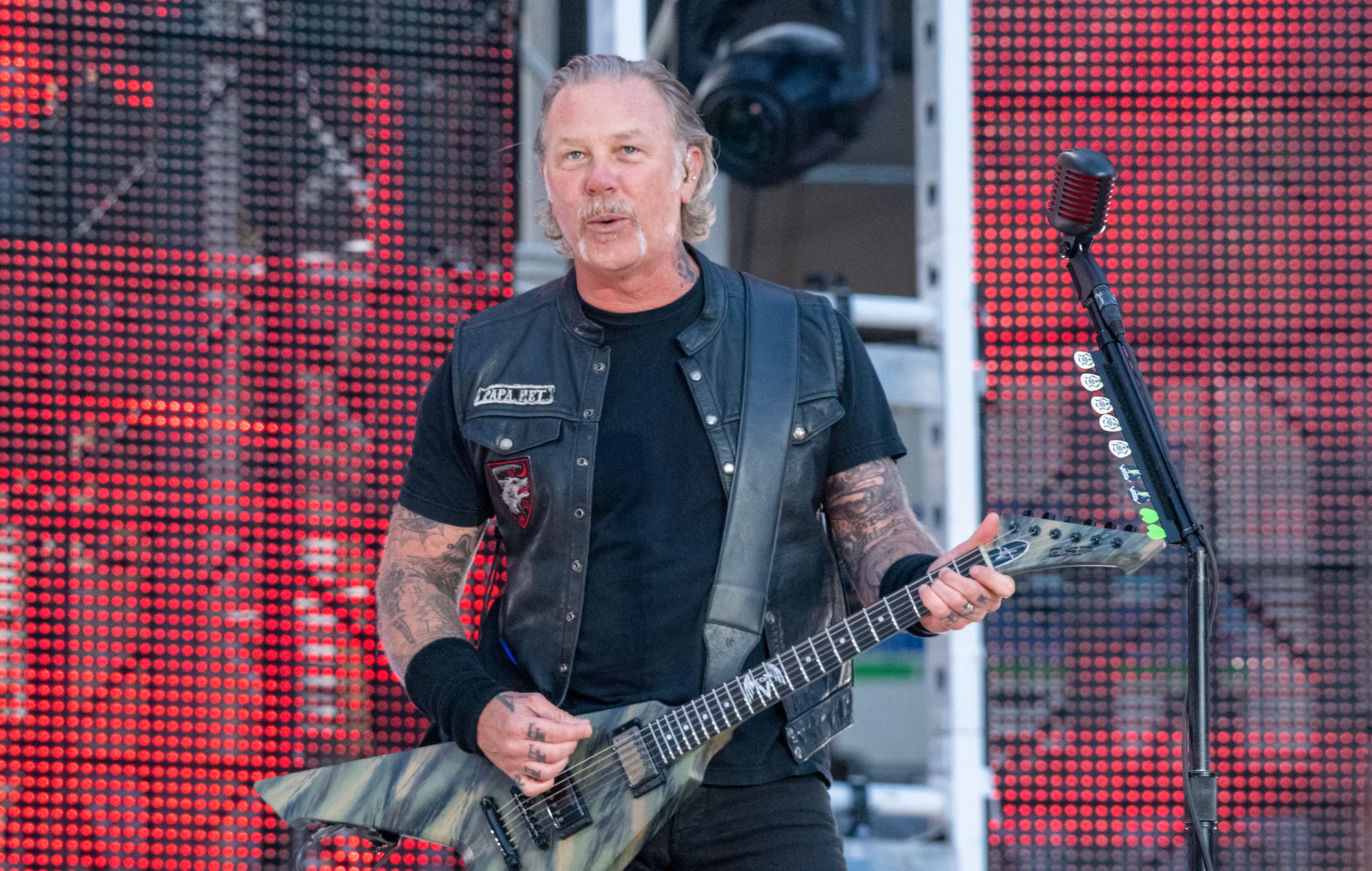 A new species of venomous snake has been named after Metallica's James Hetfield | NME