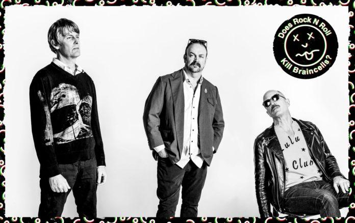 Does Rock 'N' Roll Kill Braincells?! - Stephen Malkmus - NME interview
