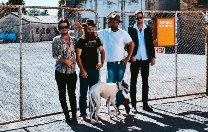 Dip Road Dogs