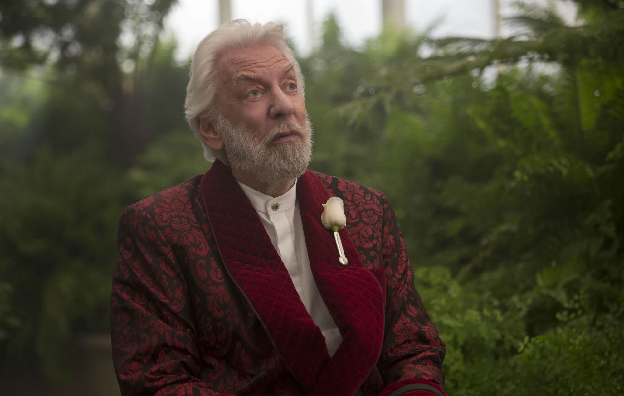 The Hunger Games Prequel Confirmed For Film Adaptation