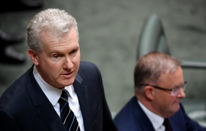Shadow arts minister Tony Burke