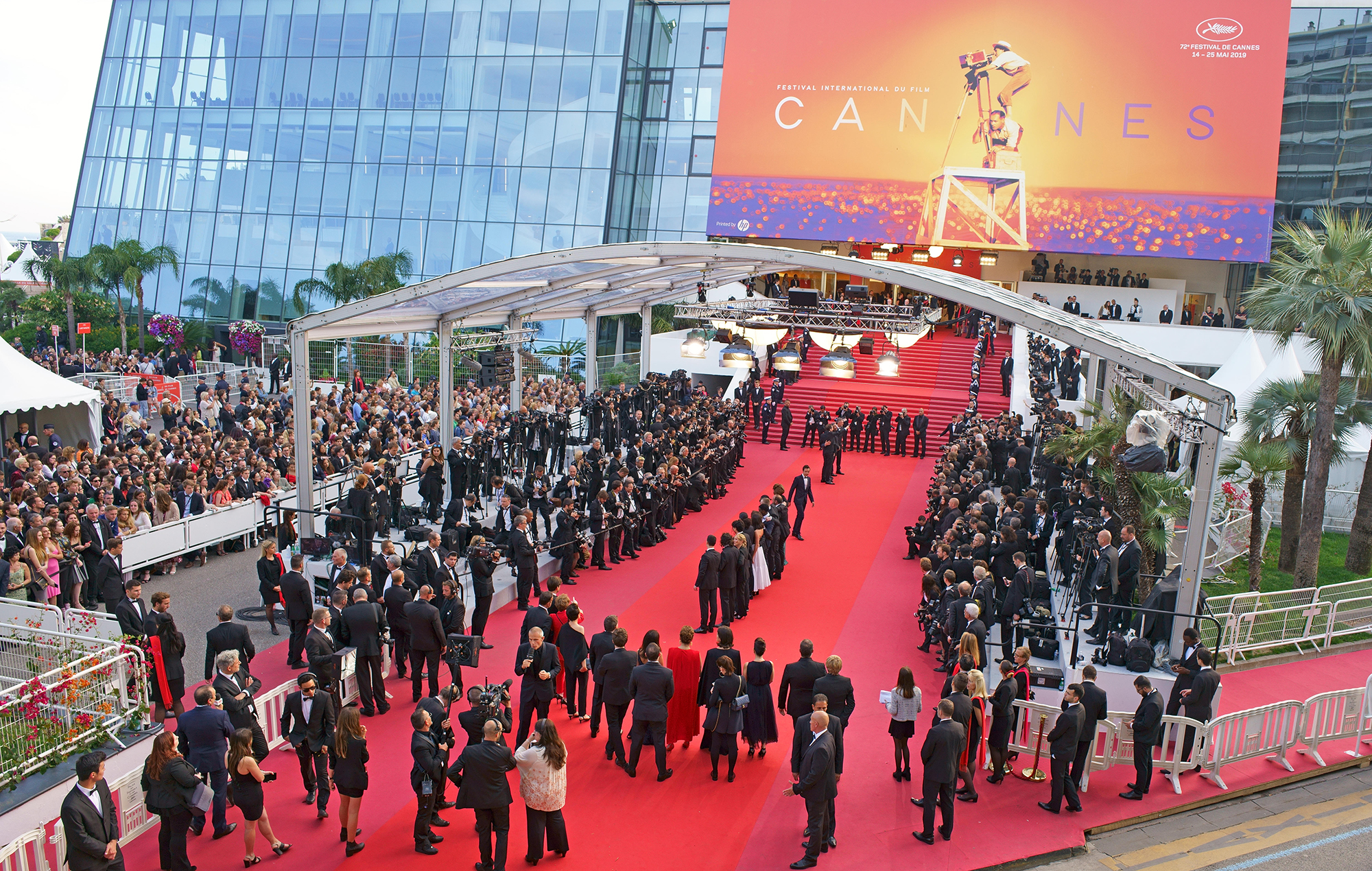 Cannes movies