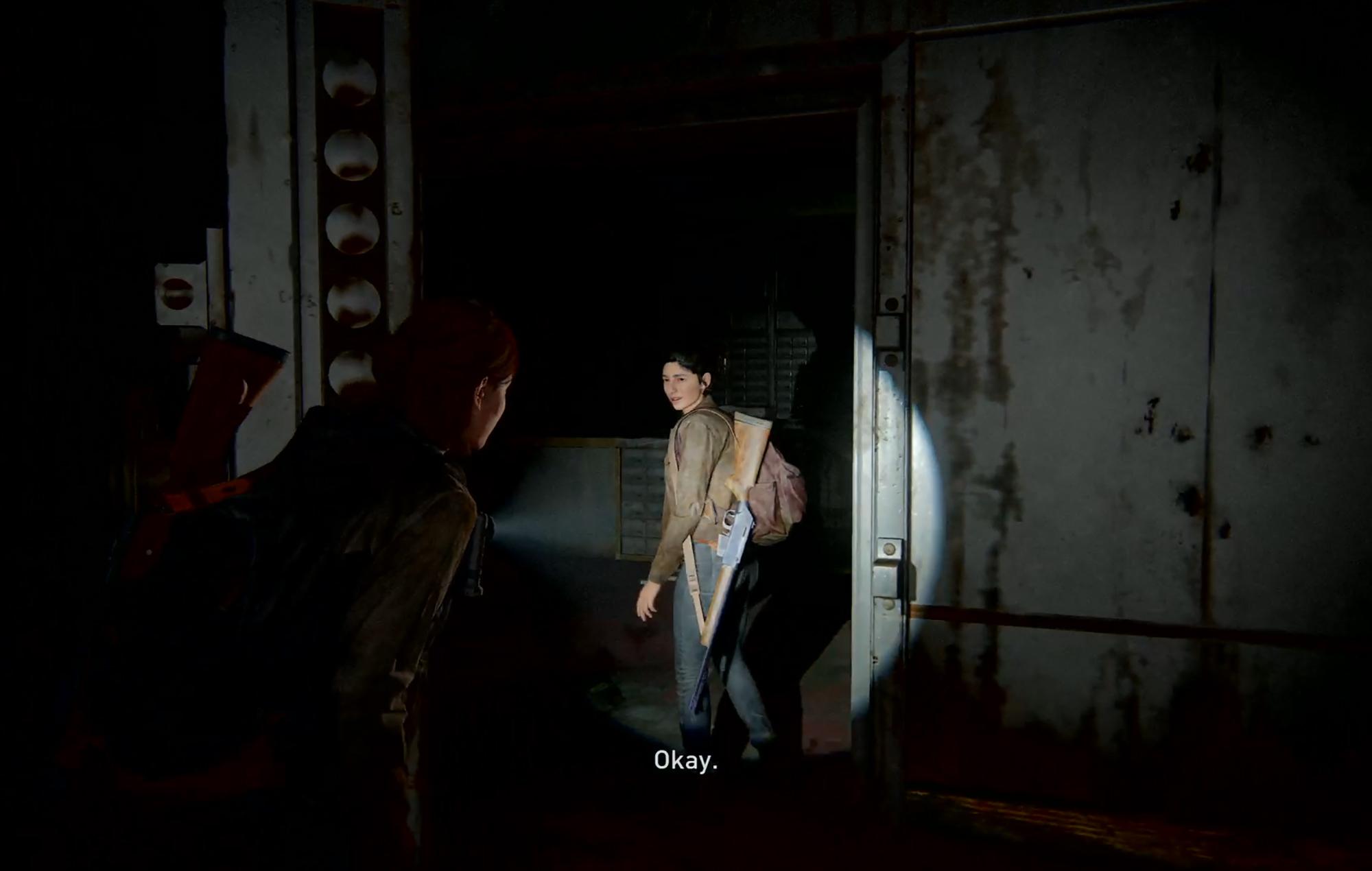 Last Of Us II Safe 2