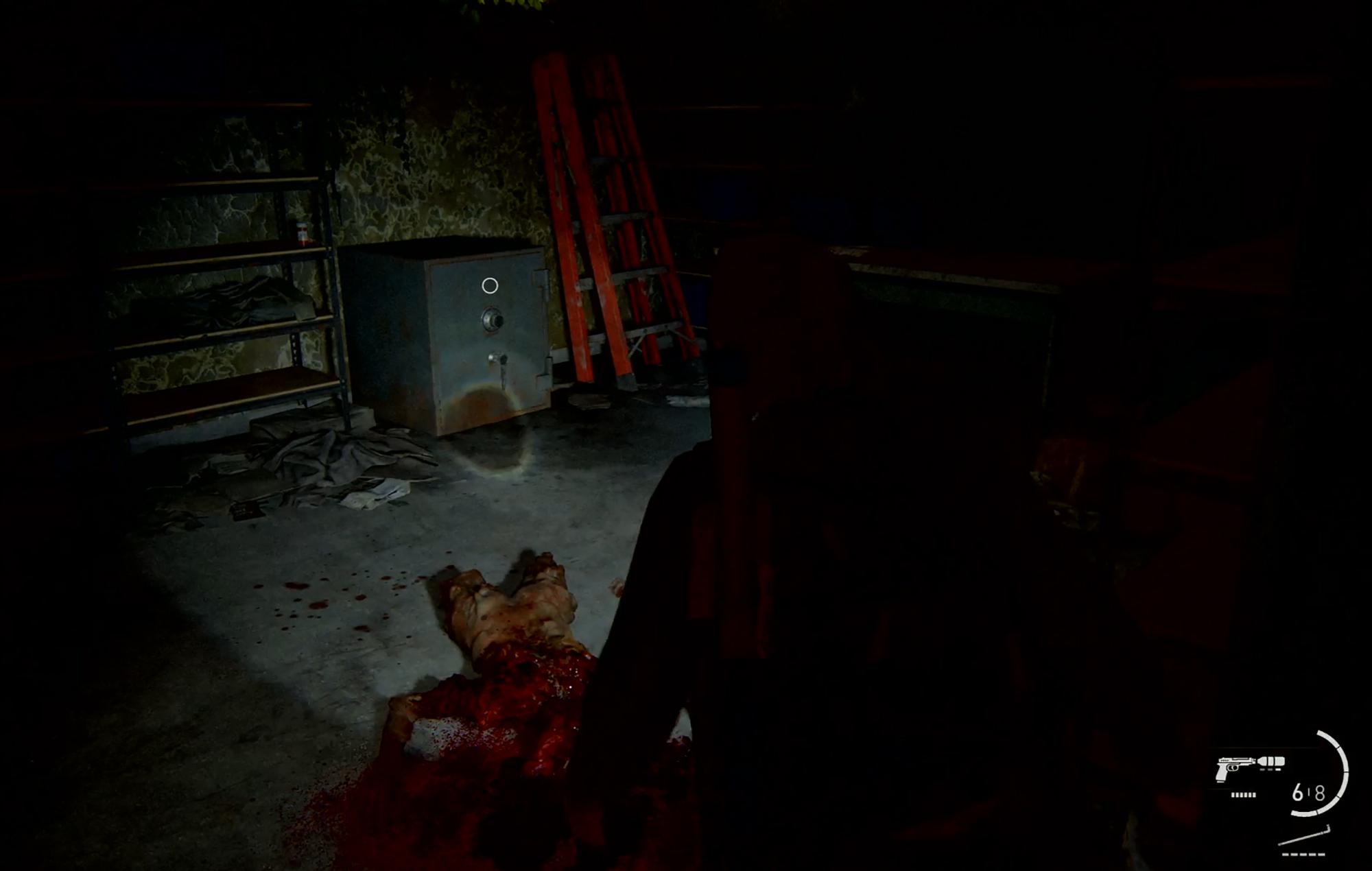 Last Of Us II Safe 5