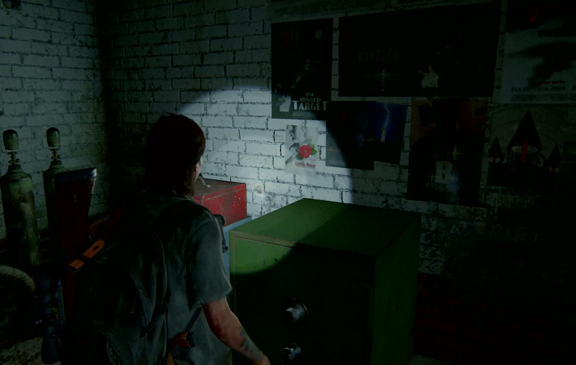 Last Of Us II Safe 6