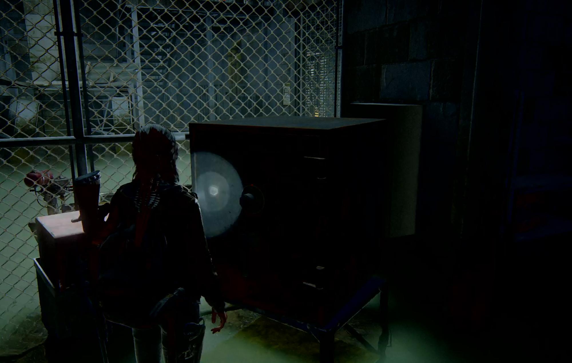 Last Of Us II Safe 9
