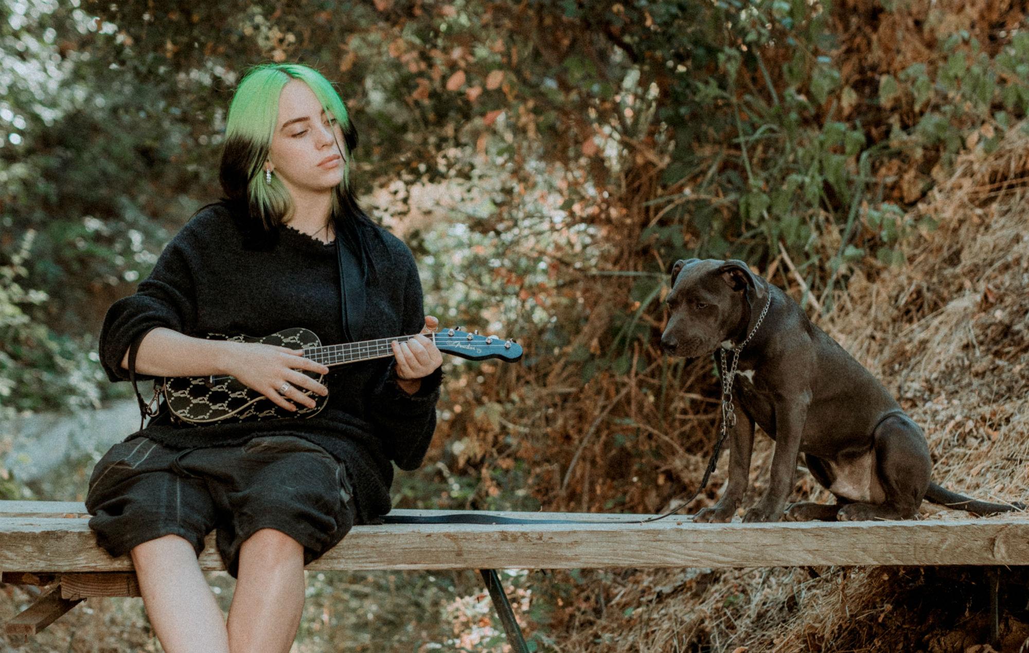 billie eilish ukulele