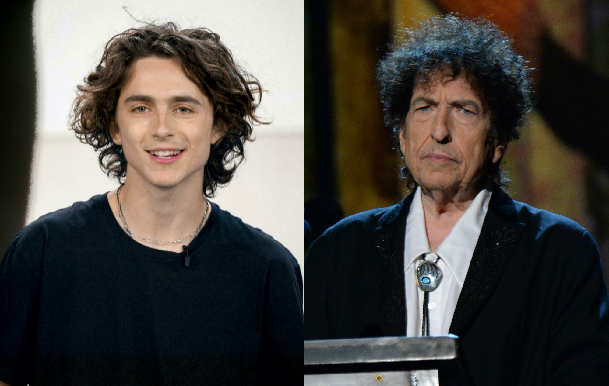 Timothee Chalamet S Bob Dylan Biopic Has Been Put On Hold