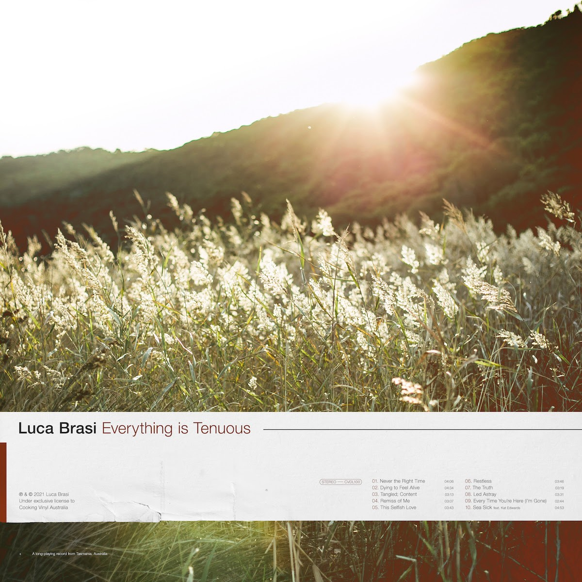 luca brasi everything is tenuous album artwork
