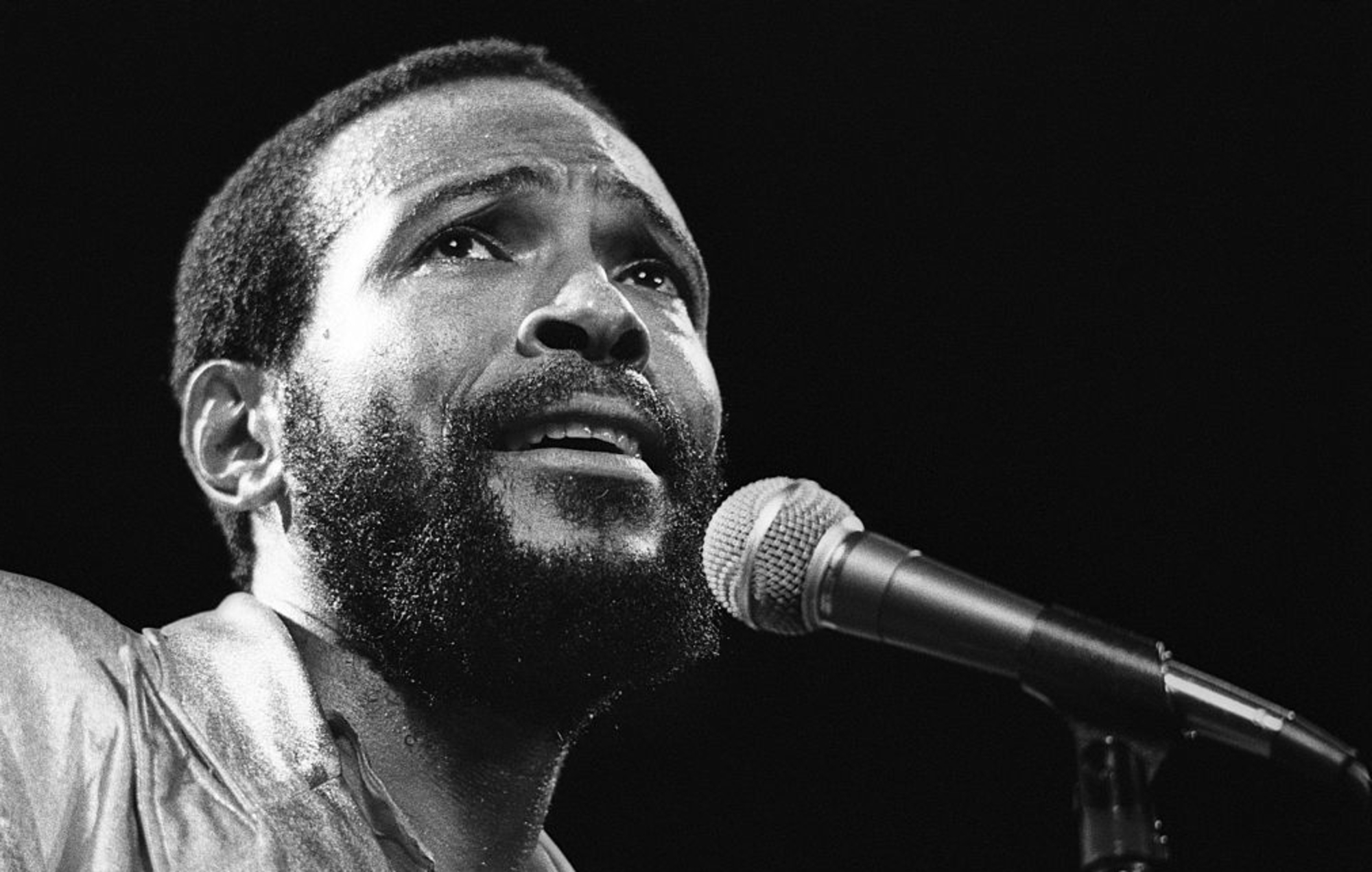 Rare Marvin Gaye instrumental album made available for very first time