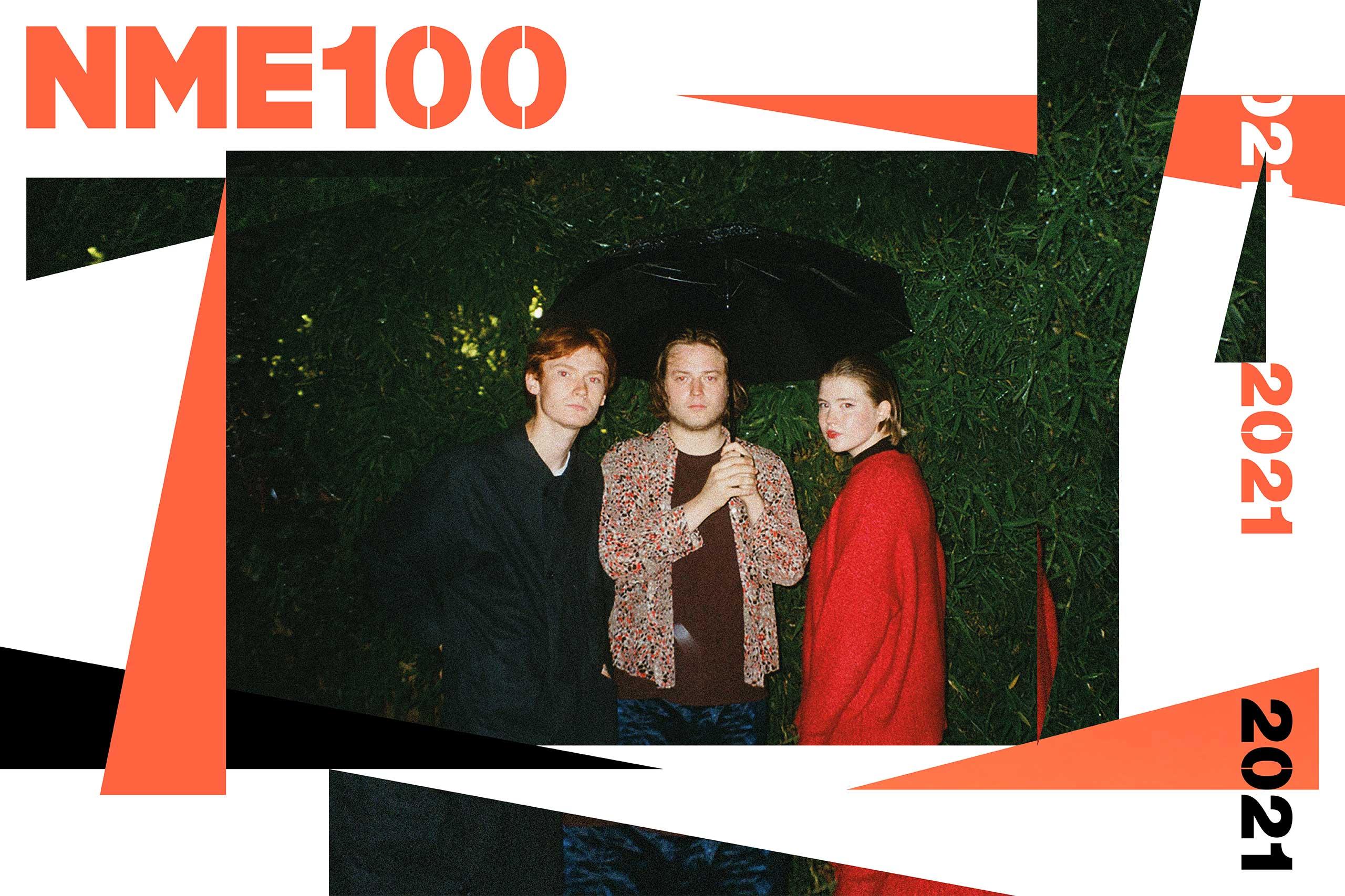 NME 100 pva