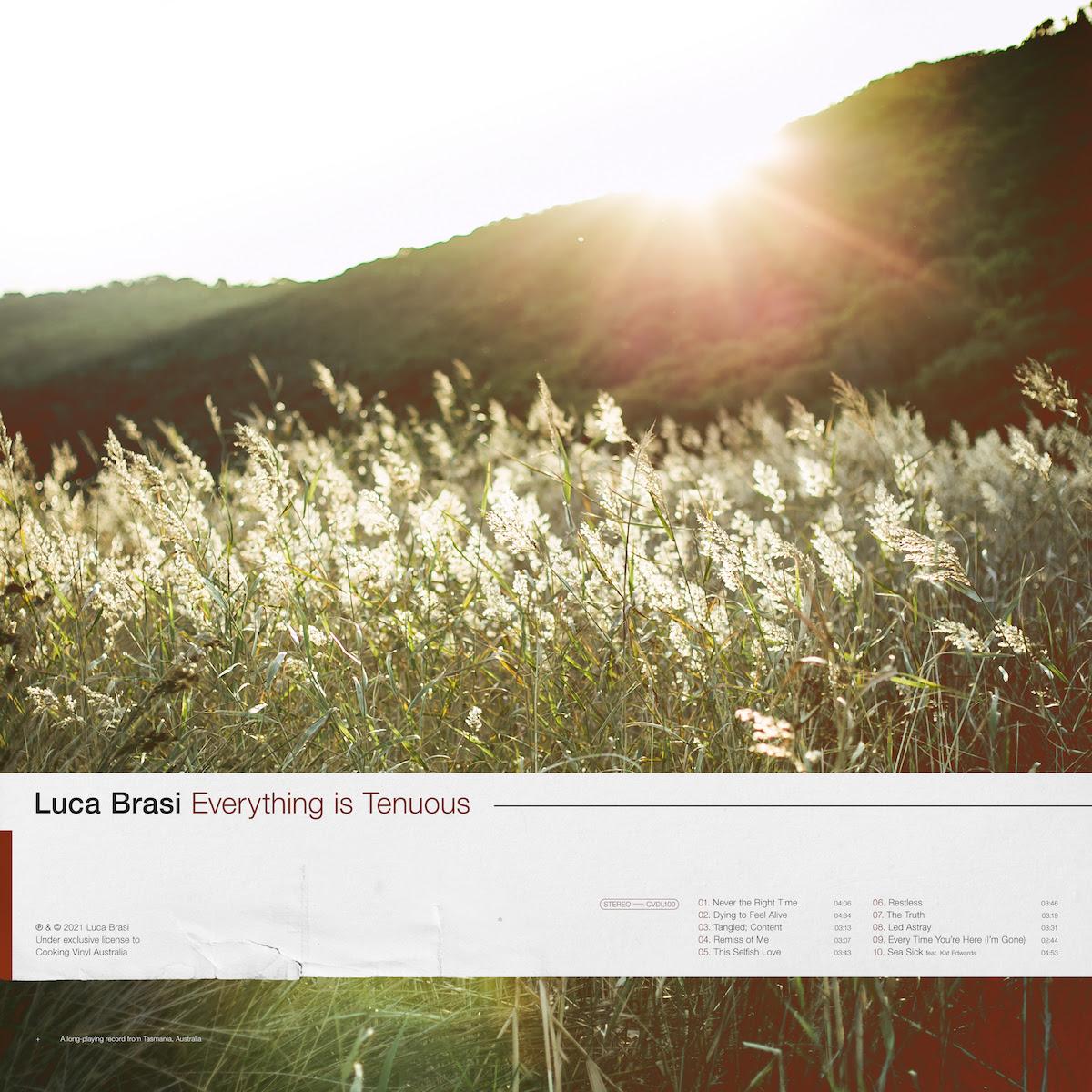 Luca Brasi 2021 album Everything Is Tenuous