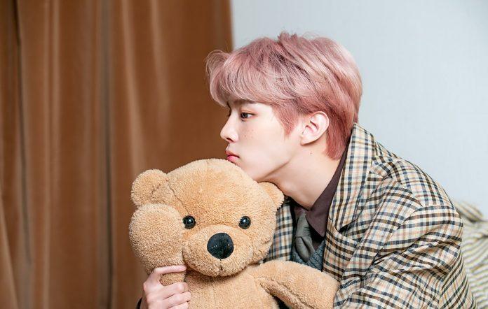 kim woo seok 2nd desire tasty review