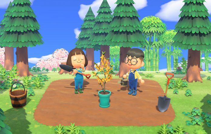Animal Crossing New Horizons Singmogil. Image Credit: Nintendo