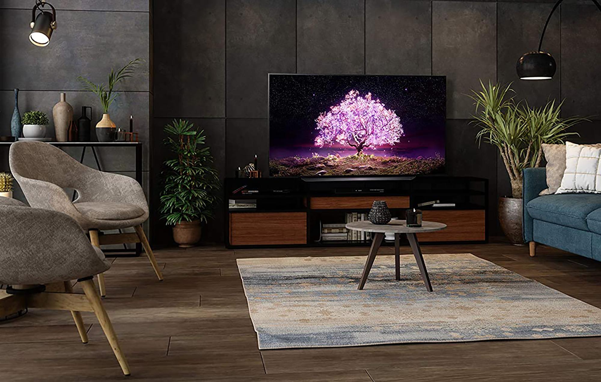 LG OLED 55 inch TV lifestyle