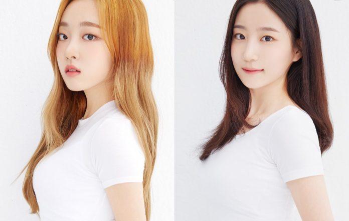 cignature new members chloe do hee