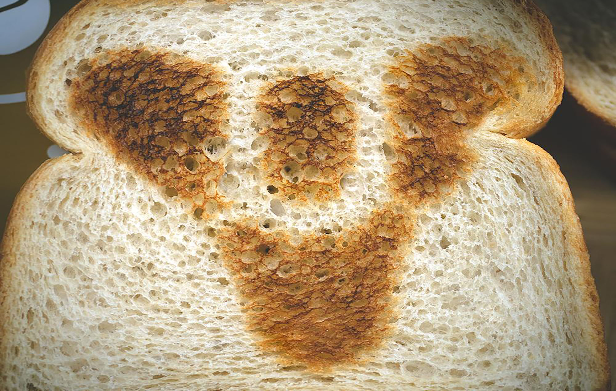 The toast from the Destiny toaster. Image credit: Bungie