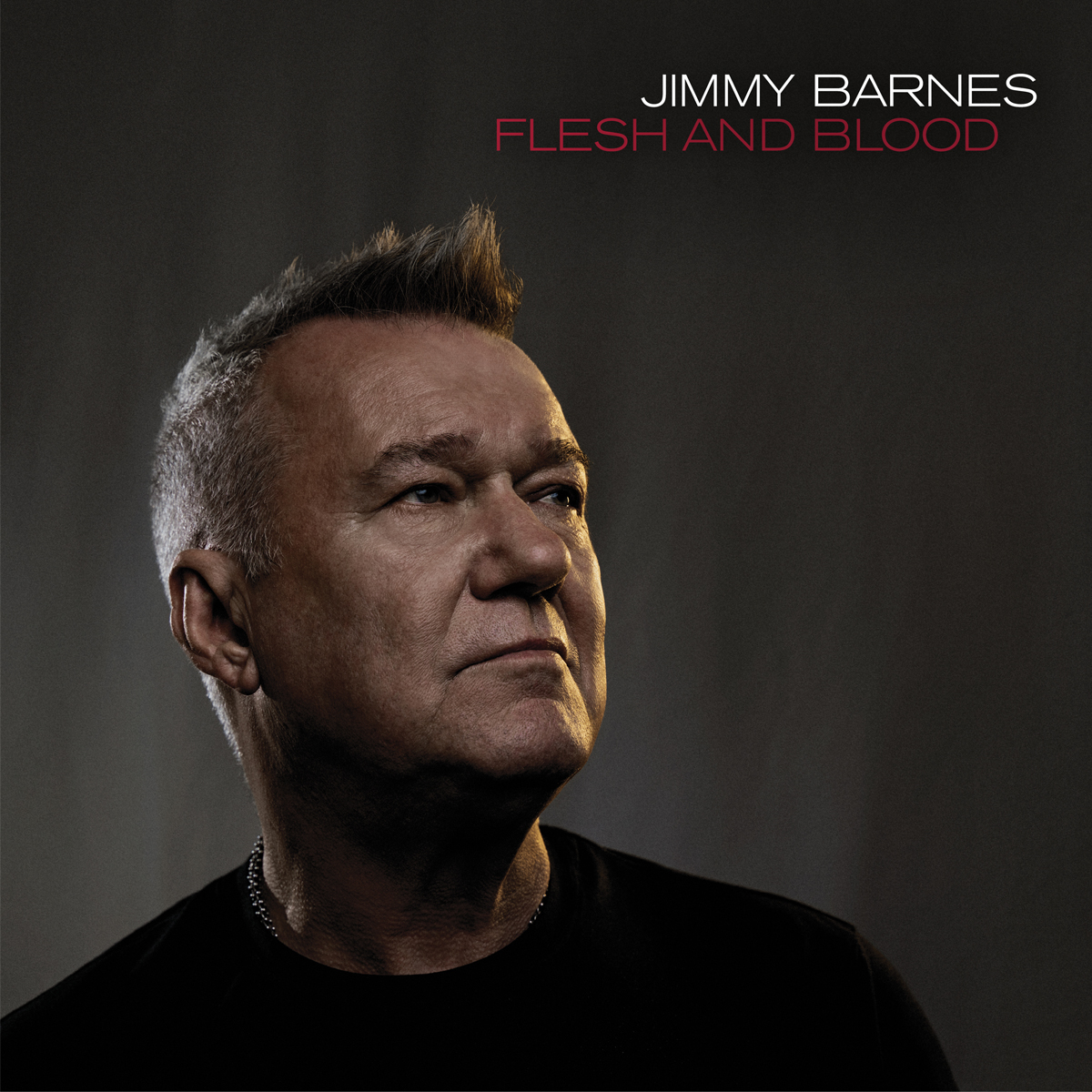 Jimmy Barnes Flesh and Blood album 2021
